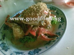 golden sand oat crab